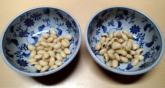 fujisawa20141202b_w560.jpg