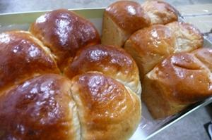 国産有機小麦(転換期間中)の強力粉ハルユタカ小麦粉で焼いたパン