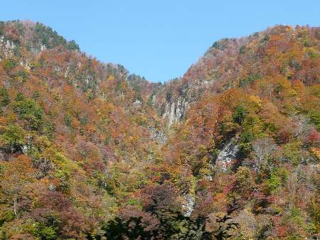 白山スーパー林道の紅葉2009年10月