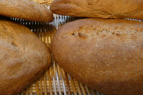 金沢大地の小麦と外国産小麦の全粒粉パンを食べ比べ
