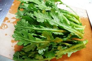 無農薬野菜 春菊